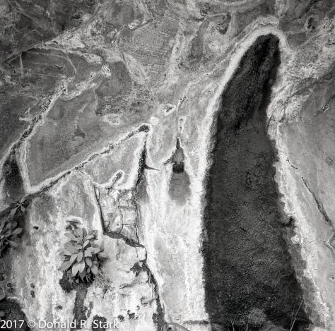 Hunter Canyon wall seep